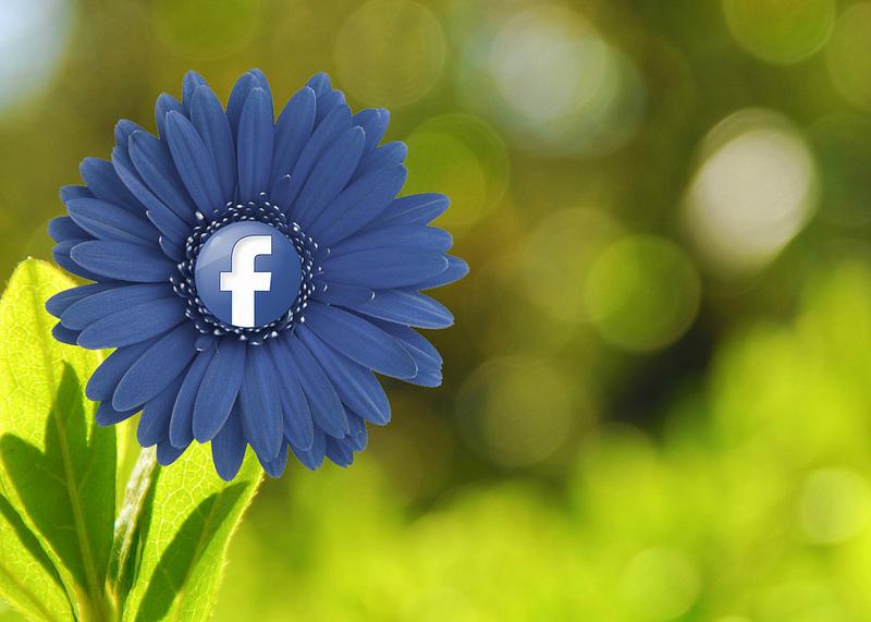 gestire-pagina-facebook